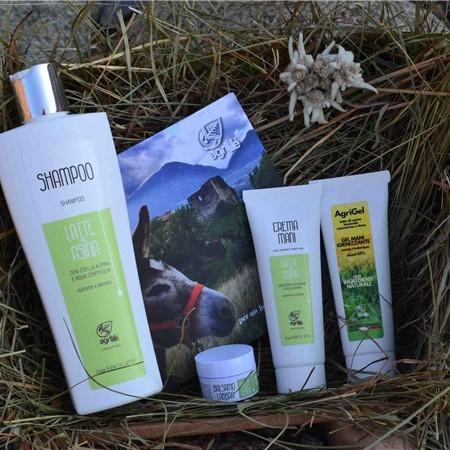 Agrilife Beauty Box 02 - taglia M
