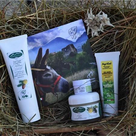 Agrilife Mountain Box PINO - taglia M